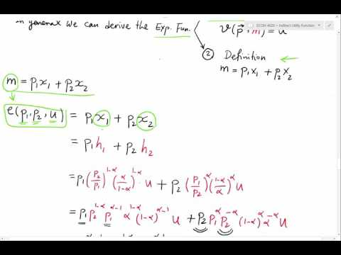 Lecture 5 - Expenditure Function (2)