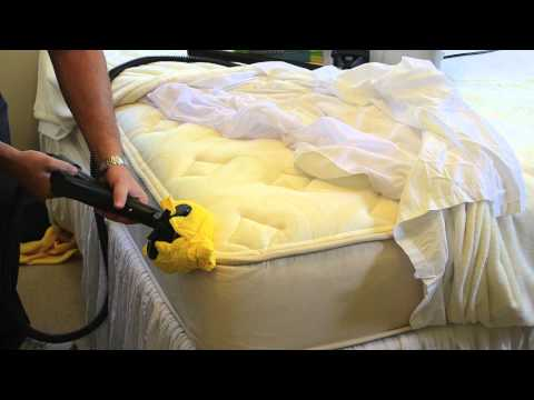 How to Kill Bed Bugs On A Mattress Using Steam