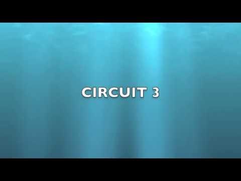 Electrical Circuit 3