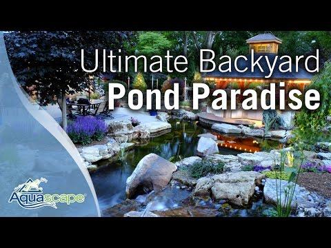 Ultimate Backyard Pond Paradise