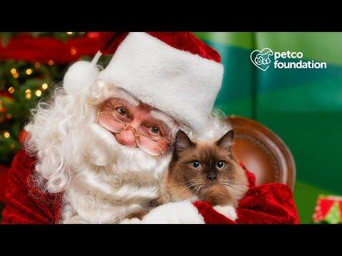 Photos with Santa (Petco)