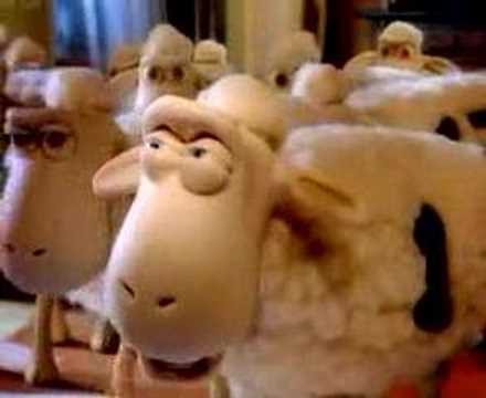 Serta Sheep—Spies