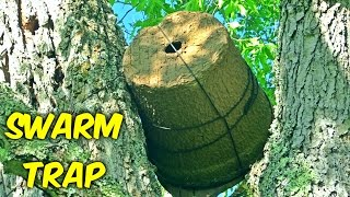Setting Up Bee Swarm Trap - Beekeeping