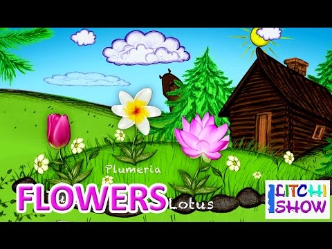 Learn English Flowers names with picture for children | flowers names for Kids in english