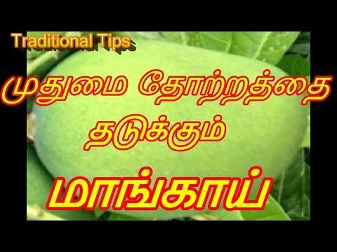 முதுமை தோற்றத்தை தடுக்கும் மாங்காய்    Benefits of Mango in Tamil