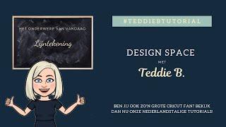 Lijntekening - Teddie B.