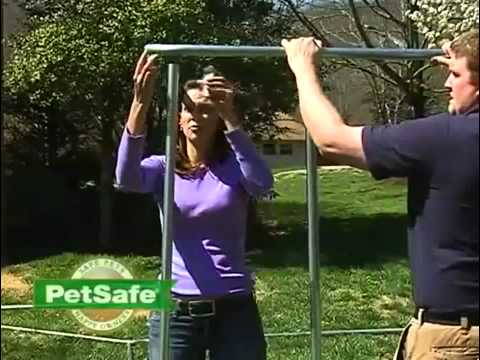 PetSafe Chain Link Dog Kennel