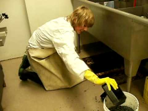 Cleaning Grease Trap 1