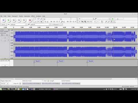 Tracking WAV files in Audacity
