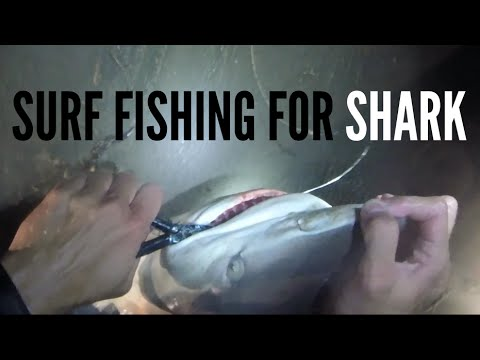 Surf Fishing for Sharks - Safety Second - Texas