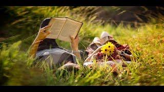Отзывы о книге которая изменила мою жизнь Самые читаемые книги России Анастасия Владимир Мегре