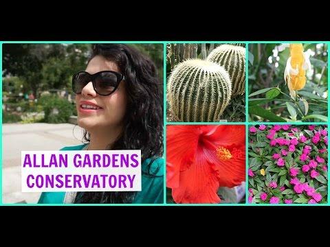 Allan Gardens Conservatory | Travel Toronto
