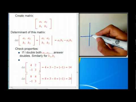 2D Area and determinants