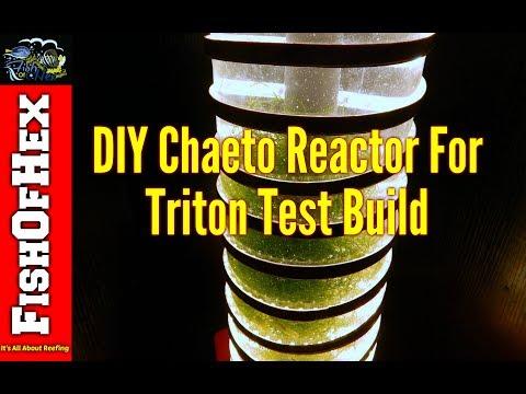 DIY Chaeto Reactor For Triton Method Test Build
