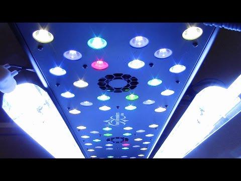 BEST GROW LIGHT INDOOR GROWING  REEF BREEDERS LED  T5 LIGHTING