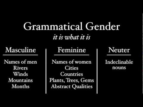 Latin Gender