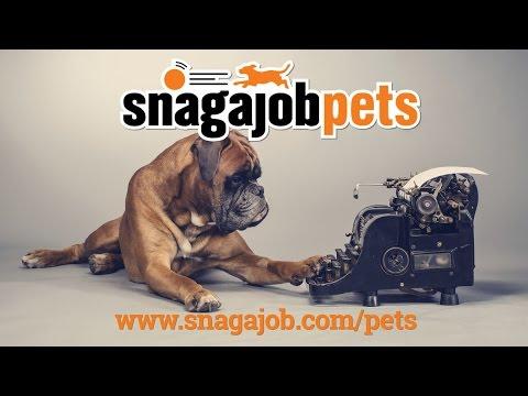 Snagajob for Pets