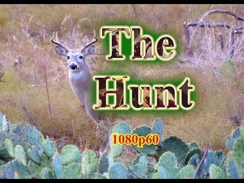 Deer Hunting Series: Part 1:  THE HUNT (1080p60 version)