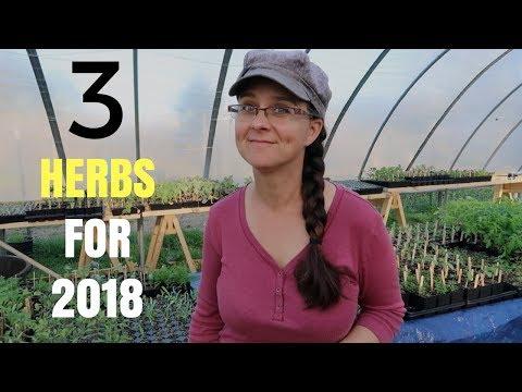 Medicinal Herb Picks for 2018