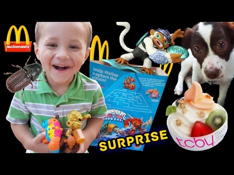 SKYLANDERS HAPPY MEAL TOYS Guessing Game + Fling Kong Surprise w/ Sky Dog Rose! (TRAP TEAM FUN!)
