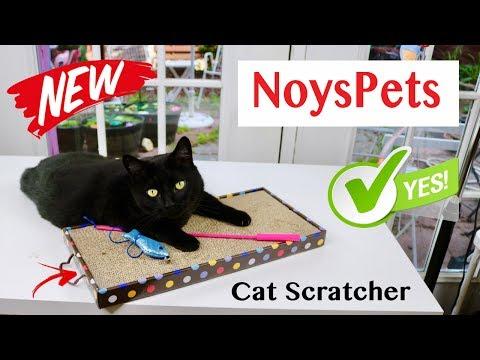 😍     NOYSPETS   ❤️   Cardboard Cat Scratcher - Review      ✅