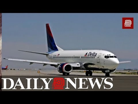 Combat veteran's service dog attacks passenger on Delta airlines flight