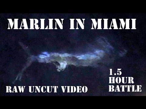 Raw & Uncut - First Marlin & In Miami