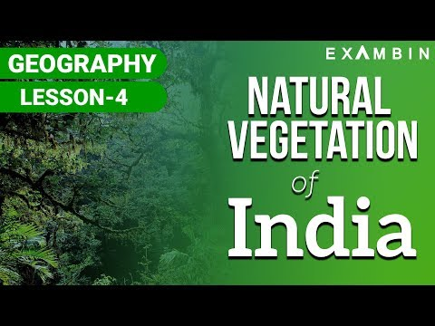 Natural Vegetation of India I Natural vegetation of INDIA UPSC/IAS