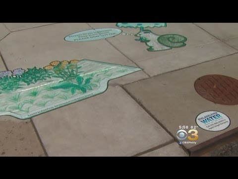 Philly Students Preventing Water Pollution With Street Art