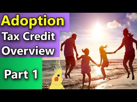 Rules for Claiming 2018 Adoption Tax Credit -  How Can I Claim the Adoption Tax Credit?