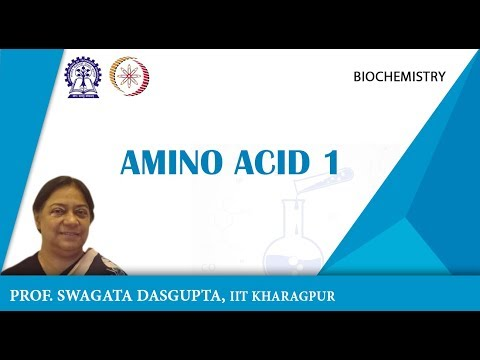Lecture   1 Amino Acids I   YouTube 360p