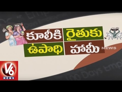 Special Story On Employment Guarantee Scheme | MGNREGS | Spot Light | V6 News