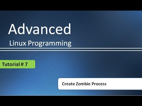 Undestanding basics of Zombie process with example : Advanced Linux Programming # Tutorial - 7
