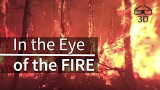 In the Eye of the Fire - 360° video