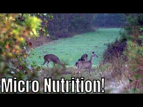 Micro Nutrition For Plants | Antler Grow Wildlife Management