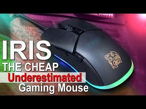 I Totally Underestimated this Cheap RGB Mouse! -- Tt eSPORTS Iris