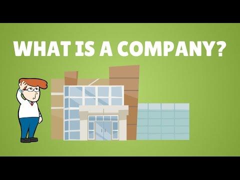 Companies law in the UAE, visualised