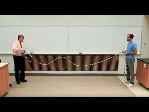 Wave Speed Demo: Rope