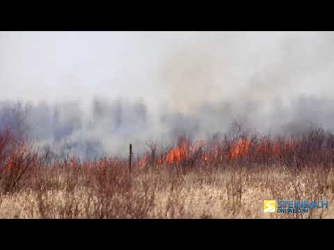 Brush Fire In La Broquerie Burns