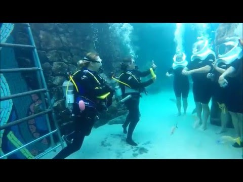 SeaVenture at Discovery Cove Walk Through - 2015