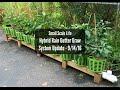Hybrid Rain Gutter Grow System Update 9/14/16