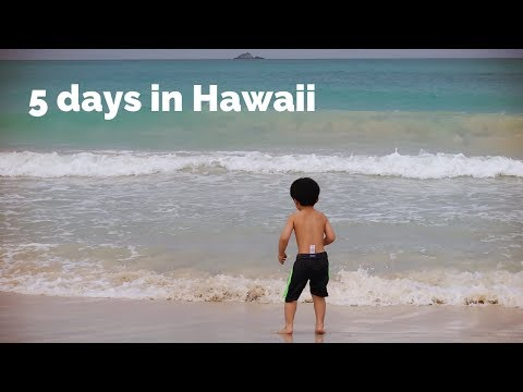 Hawaiian Trip with Our 3-Year-Old Son (겨울 하와이 가족 여행)
