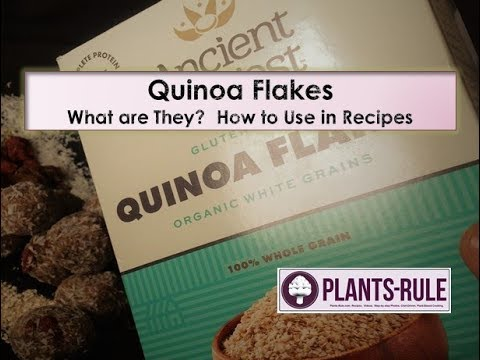 Quinoa Flakes: What Are They and How to Use by Plants-Rule