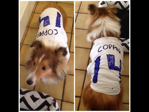 DIY Doggie Jersey-NO SEW!!