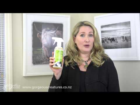 Cowhide Cleaner Introduction to a new product from Gorgeous Creatures