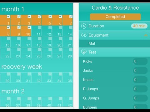 InsaniTime: Insanity Tracker for iPhone