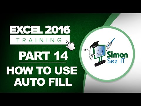 Excel 2016 Training Part 14: How to Auto Fill to Fill Data Automatically