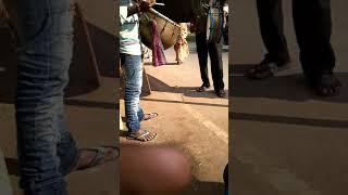 Chennai death