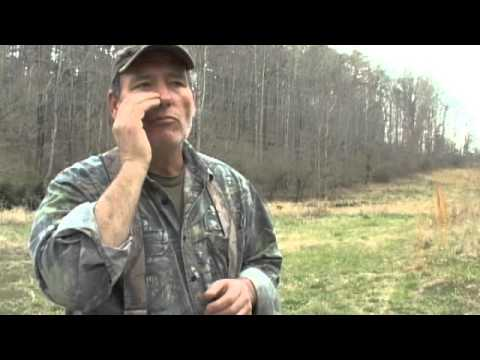 How To Hunt Turkeys - The Best Mouth Call