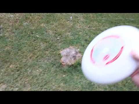 How 2 throw a Frisbee